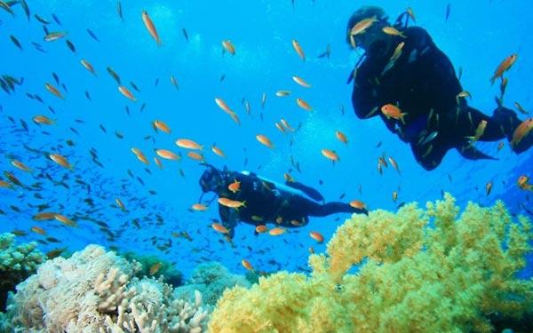 water-scuba-diving